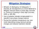mitigation strategies30
