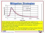 mitigation strategies32