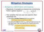 mitigation strategies33