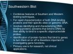 southwestern blot
