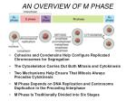 an overview of m phase