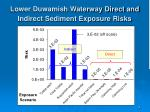 lower duwamish waterway direct and indirect sediment exposure risks