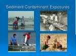 sediment contaminant exposures