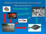 sediment site seafood consumption risk assessment