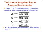 the promoter recognition dataset numerical representation