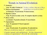 trends in animal evolution