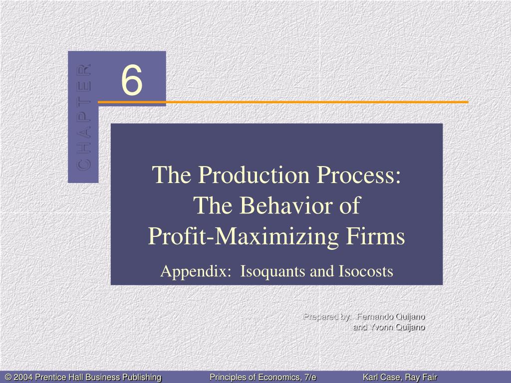 the production process the behavior of profit maximizing firms l.