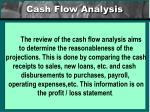cash flow analysis20