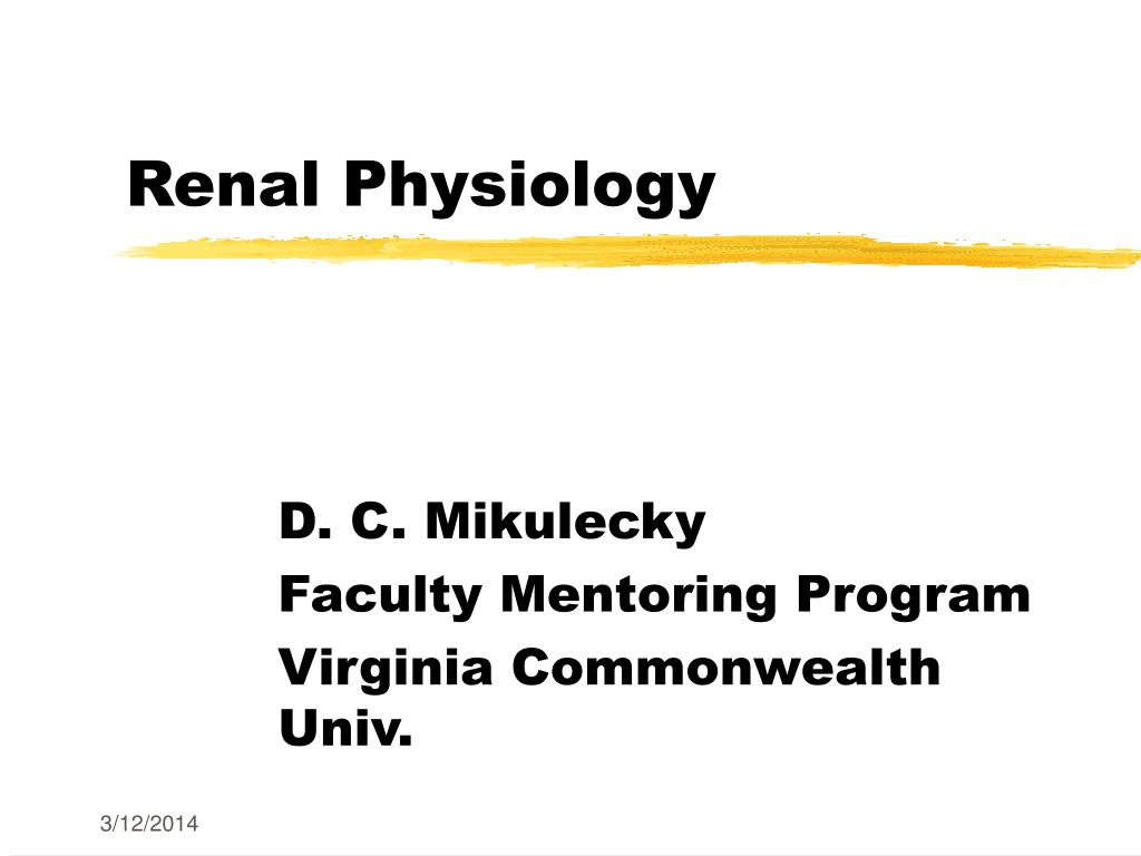 renal physiology l.