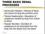 three basic renal processes