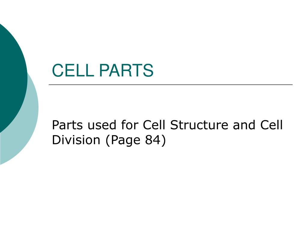 cell parts l.