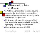 associated proteins of muscle