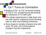 ca 2 turns on contraction
