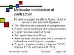 molecular mechanism of contraction