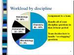 workload by discipline