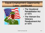 equal employment opportunity laws continued13