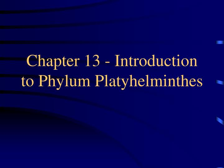chapter 13 introduction to phylum platyhelminthes n.
