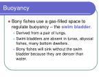 buoyancy53