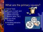 what are the primary causes