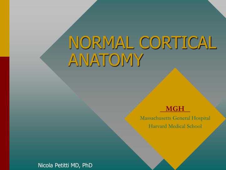 PPT - NORMAL CORTICAL ANATOMY PowerPoint Presentation - ID:332604