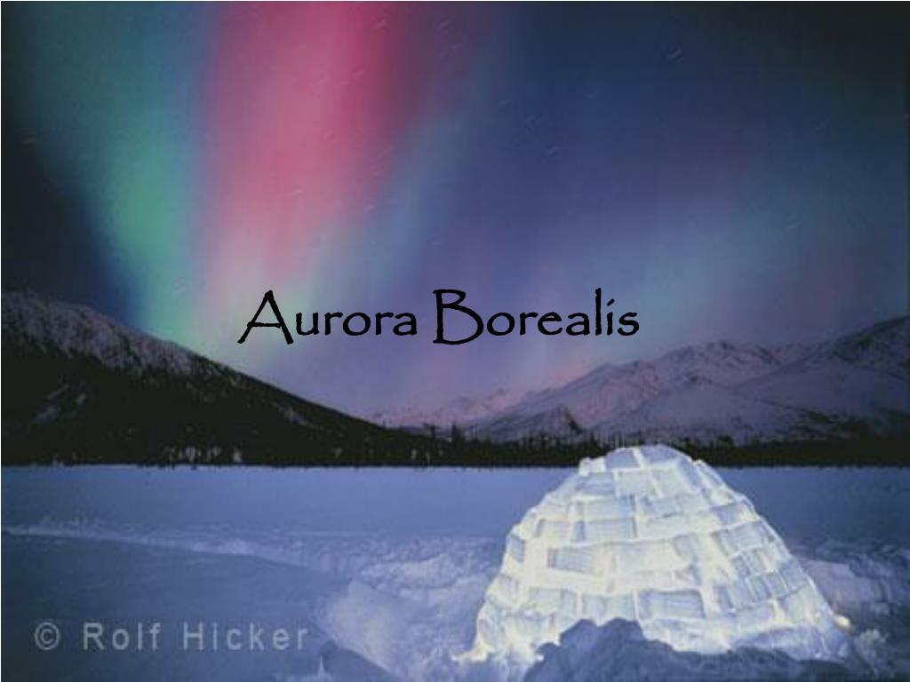 aurora borealis l.