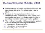 the countercurrent multiplier effect