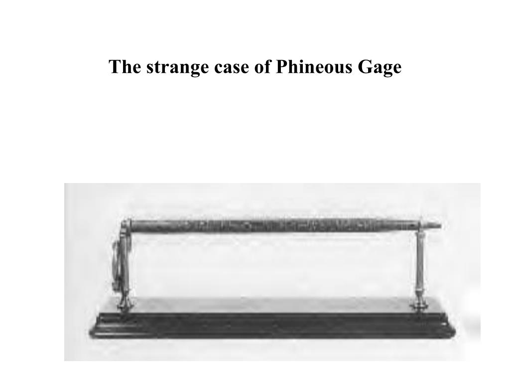 the strange case of phineous gage l.