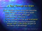 a tour through the brain