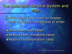 the autonomic nervous system and yoga