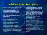 individual project descriptions