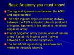basic anatomy you must know