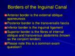 borders of the inguinal canal