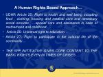 a human rights based approach17