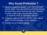 why social protection