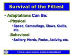 survival of the fittest13