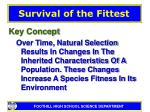 survival of the fittest15