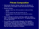 filtrate composition