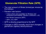 glomerular filtration rate gfr