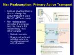 na reabsorption primary active transport