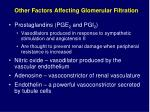 other factors affecting glomerular filtration