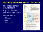 secondary active transport cotransport