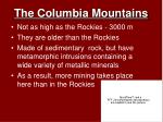 the columbia mountains