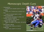 monoscopic depth cues