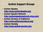 autism support groups