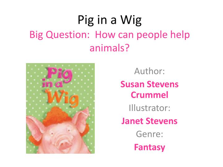 pig in a wig big question how can people help animals n.