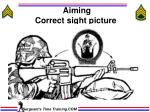 aiming correct sight picture
