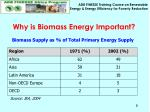 why is biomass energy important