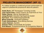 projektni management wp 12