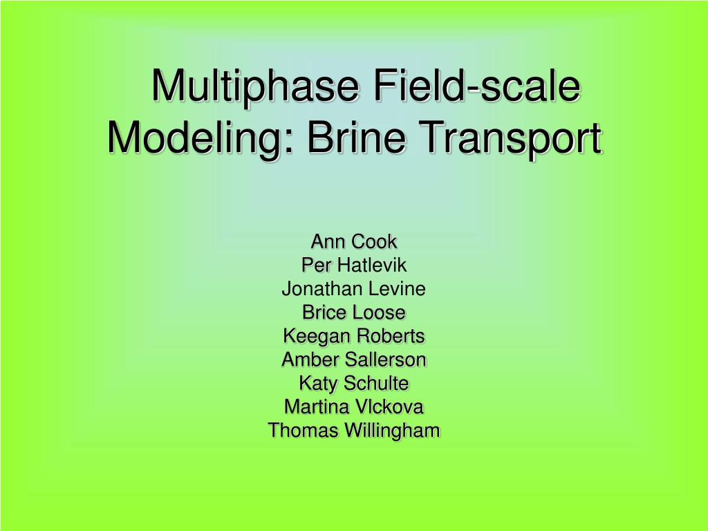 multiphase field scale modeling brine transport l.
