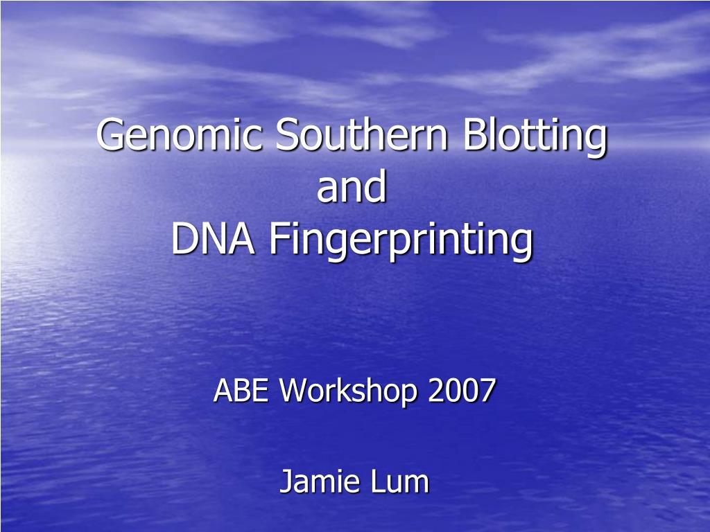 genomic southern blotting and dna fingerprinting l.